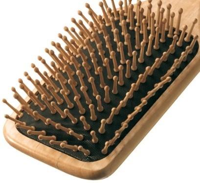 Brosse à cheveux SPA Ecobell